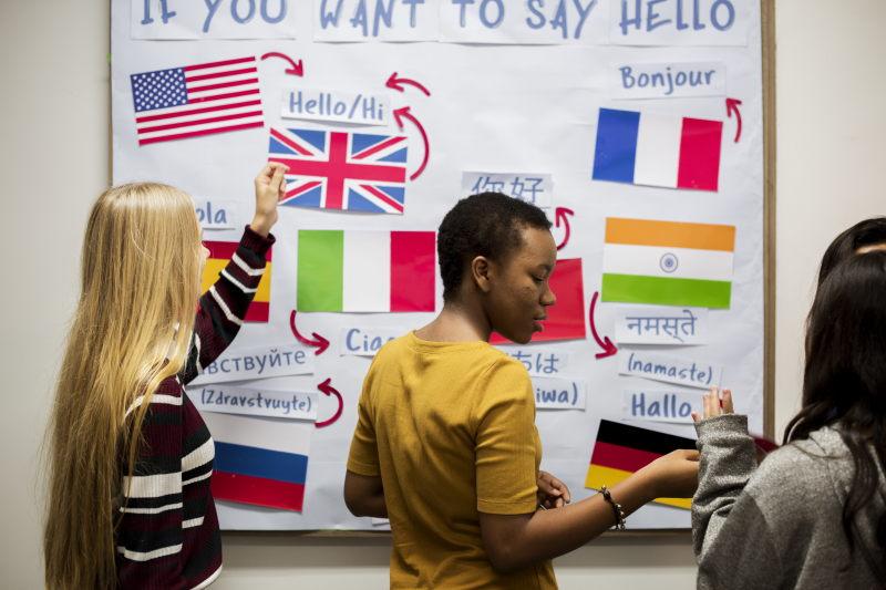 Didattica della lingua italiana come lingua seconda (L2)